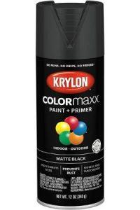 Krylon Color Maxx Paint+
